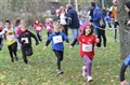 24/11/13 - Cross D'Alizay (41)