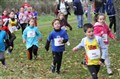 24/11/13 - Cross D'Alizay (42)