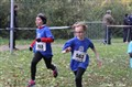 24/11/13 - Cross D'Alizay (25)